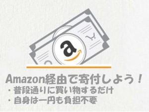 amazon-kifu