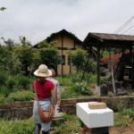 北杜市での農的な暮らし紹介